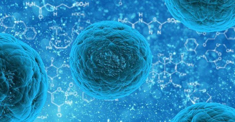 Coronavirus : la vague monte en Pays de la Loire
